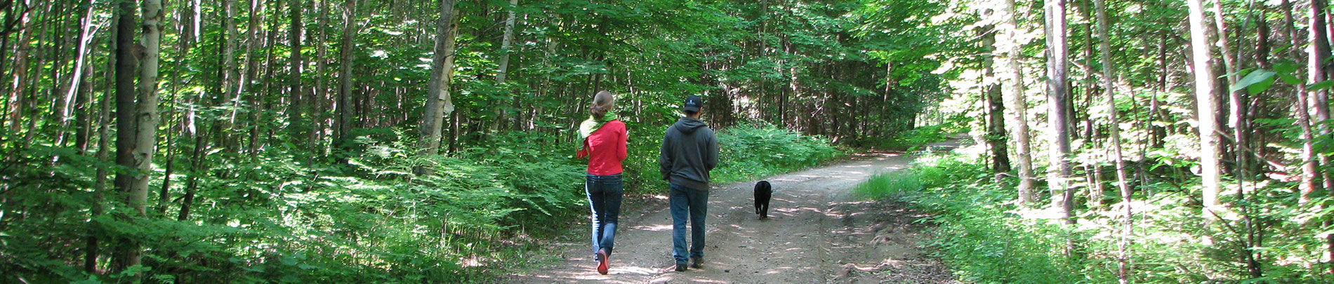 A couple and their dog hike a trail in Highlands East.