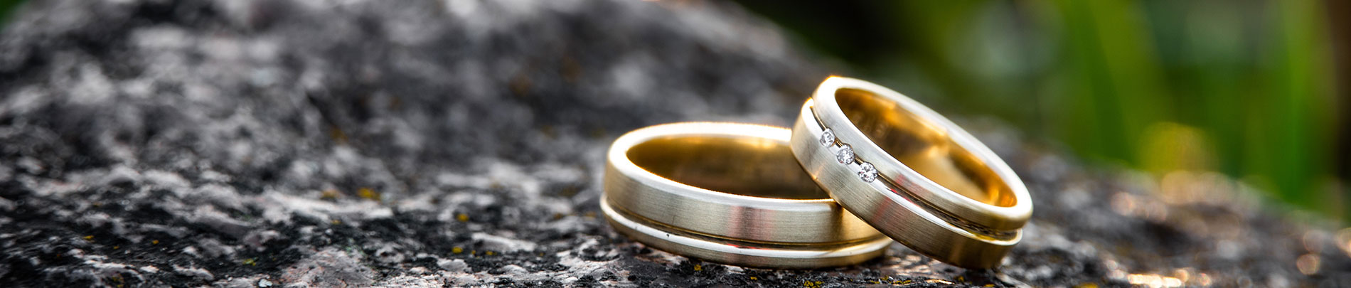 Wedding rings sit on a rock with green foliage in the background.