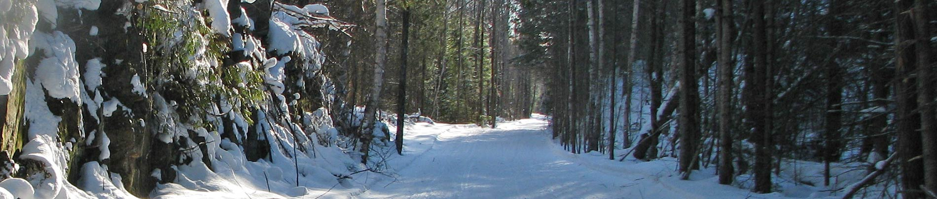 A snow covered trail in winter with sun shining down through the trees.