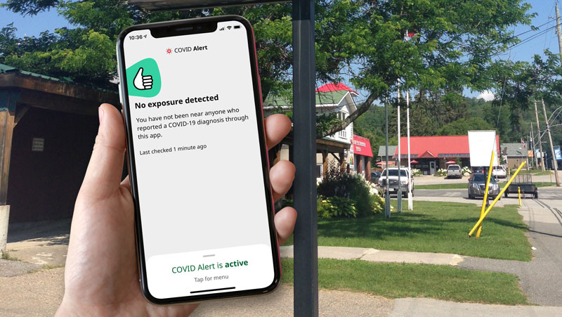 A hand holds up the COVID Alert app on their phone.