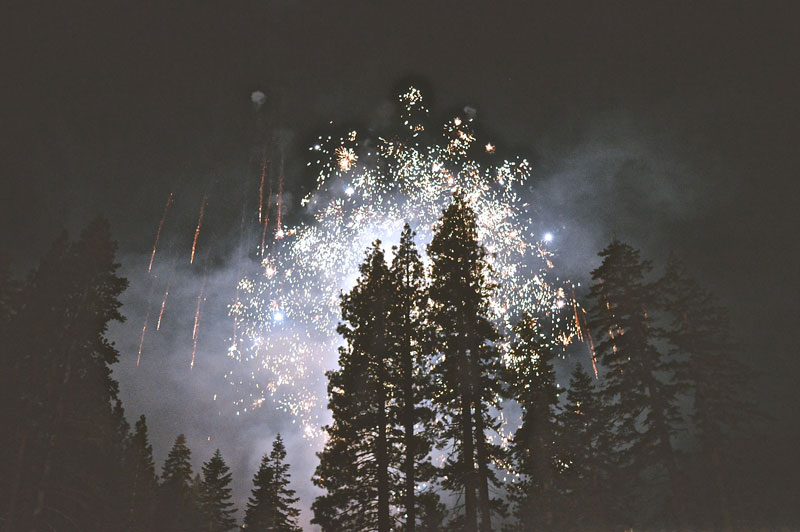 Fireworks explode silhouetting the surrounding tall pine trees.